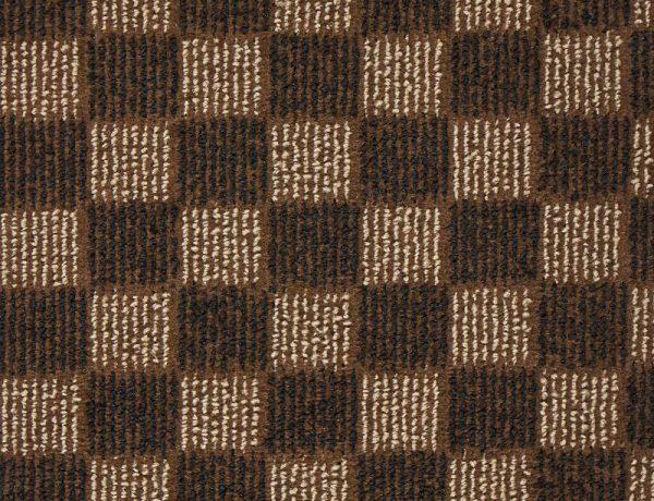 CS5101 Brown