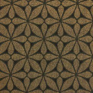 n8006-lotus
