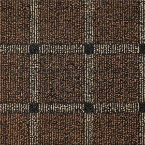 ts3101-brown-dv