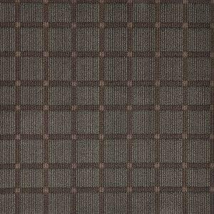 ts01-brown-lv