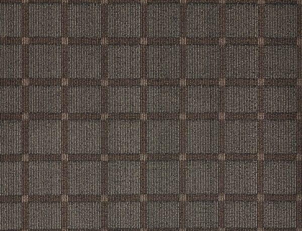 TS01 - Brown (LV)